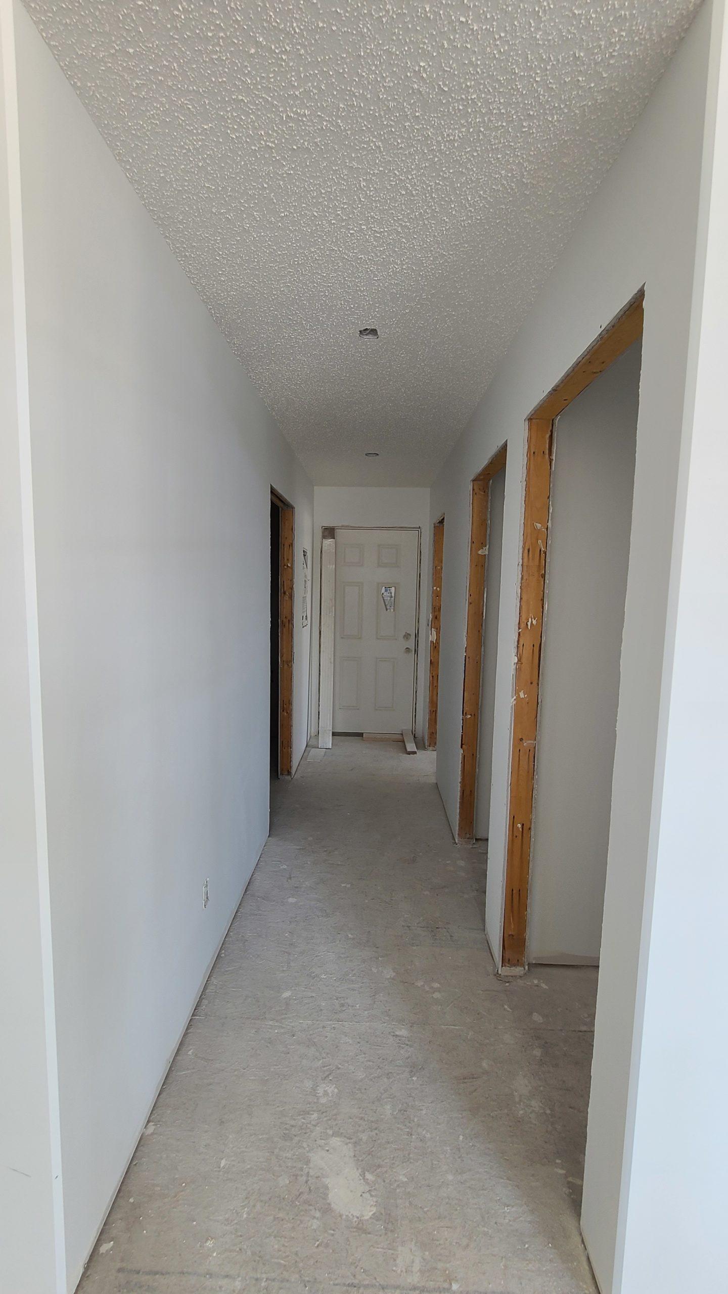 Back Door - Hallway RTM under construction