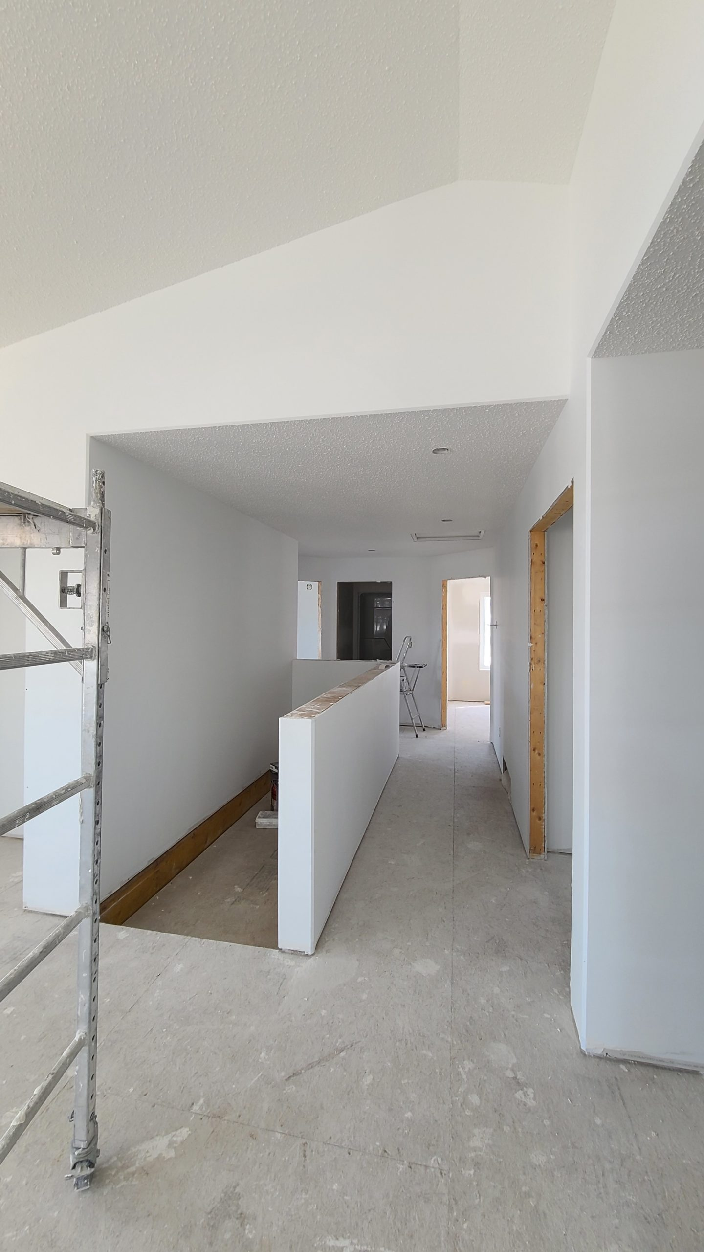 Basement Stairs/Hallway RTM under construction
